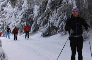 Běh na lyžích, běžky